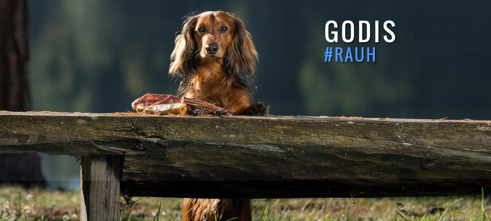 RAUH! Natural Nordic Dog Snacks