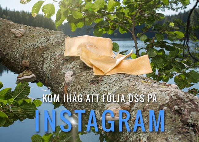 Kom ihåg att följa oss på Instagram!